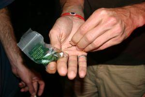 Zielone nasiona